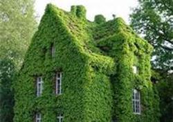 green.building